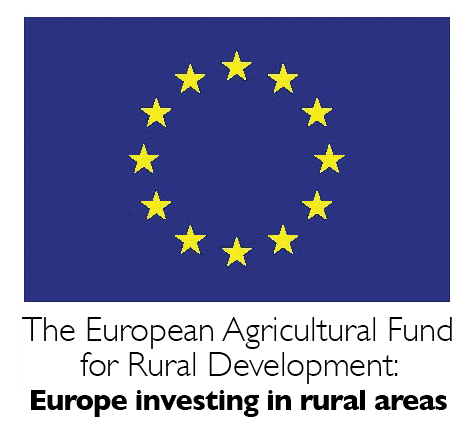 european fund logo